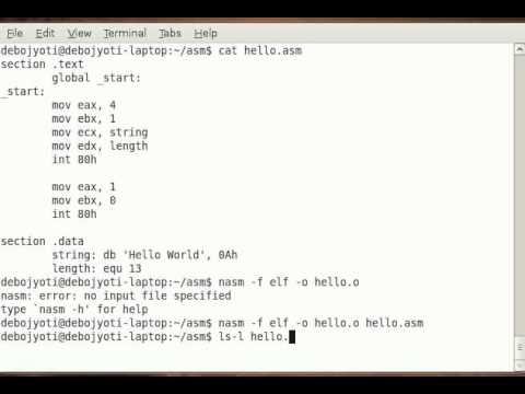 write an assembly language program to display hello world