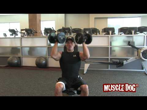 MuscleDog.com Presents: Seated Arnold Press