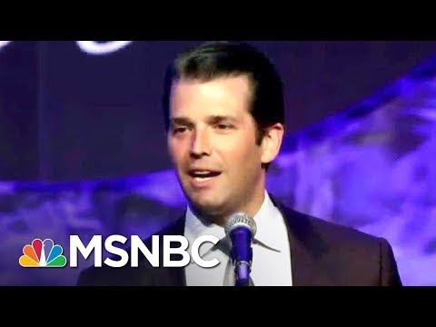 Russian Lawyer At Center Of Trump Tower Meeting Says Robert Mueller Hasn't Reached Out   MSNBC