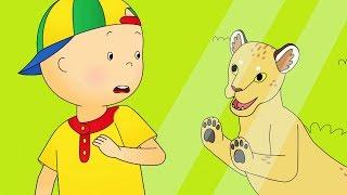 Caillou en Español Castellano | Caillou en el Zoológico | Dibujos Animados Capítulos Completos