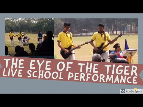The eye of the the tiger - SPORTS 2016 St. Vincent's High And Technical School, Asansol