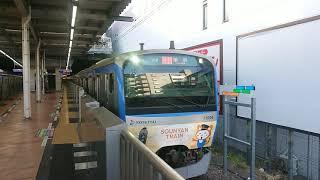 八代目そうにゃんトレイン11000形特急横浜行@二俣川駅