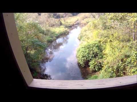 Action Cam - Tare Creek Covered Bridge