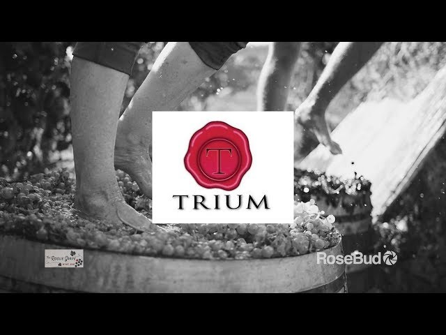 SO Famous Wine: Trium Winery In Talent, Oregon