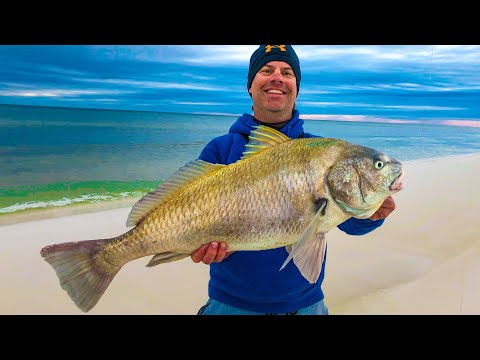 Two Rods with Giant Fish - Destin Florida Fishing Chaos!