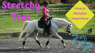 What is a STRETCHY TROT?