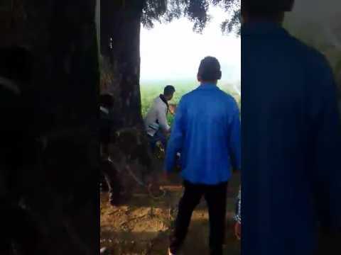 गांव की वीडियो