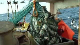 Trygt Hjem - en film om helse, miljø og sikkerhet i fiskeflåten