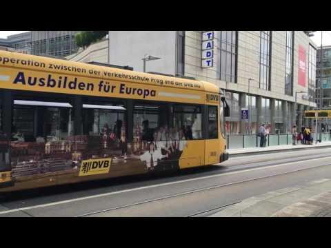 Mit Bus und Bahn durch Dresden