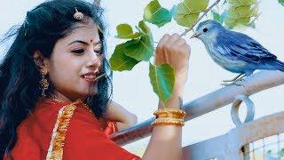 पुरे राजस्थान में जबरदस्त धूम मचा रहा है ये गाना आवे हिचकी AAWE HICHKI TEENA SINGH