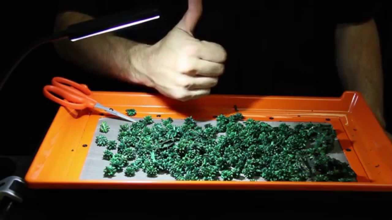 Amazing Trimming Trays | Trim Tray For Harvesting | Trim Bin Station | Lap Trim  Table Tray | Kief Trays   YouTube