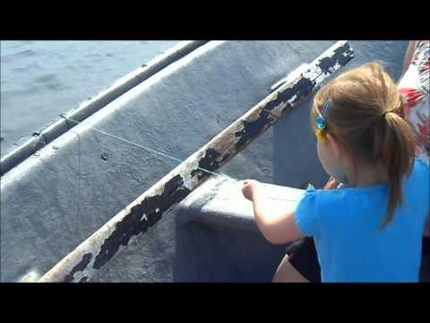 Jigging Atlantic Cod   Family Fun