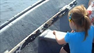 Jigging Atlantic Cod   Family Fun