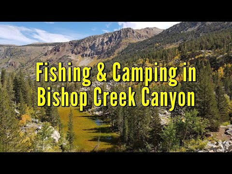 Trout Fishing And Camping In Bishop Creek Canyon