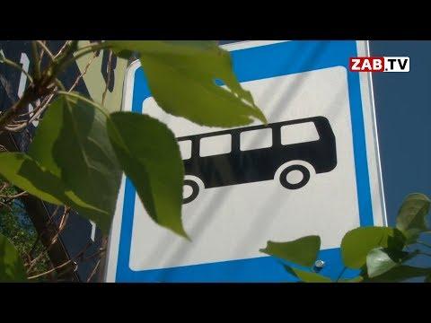 Осипов решил заменить маршрутки на муниципальные автобусы