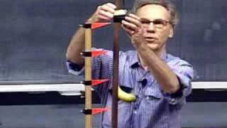 MIT Professor Walter Lewi
