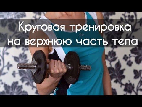 Круговая тренировка на верхнюю часть тела.