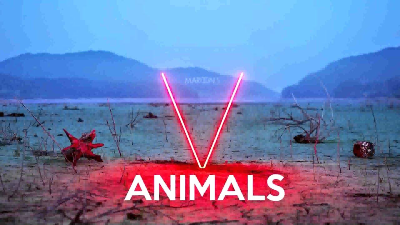 Maroon 5  Animals Instrumental  Lyrics  YouTube