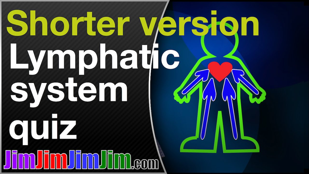 Lymphatic system - a Qi-type quiz by a man with locally advanced ...