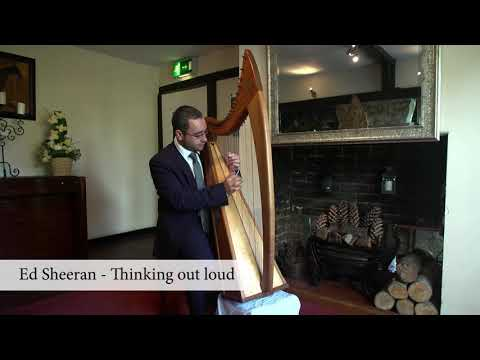 2010s - Mark Levin Harpist