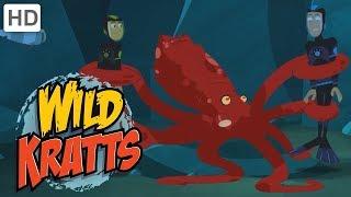 Wild Kratts - Dangerous Underwater Creatures 🦈🐙 | Kids Videos