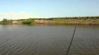 Судак на раз, два, три! Джиг с отводным поводком, Ахтуба - июль 2013.