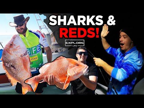 FISHING 100KMS OFFSHORE | NO FUEL, NO LIGHT & MASSIVE SHARKS!