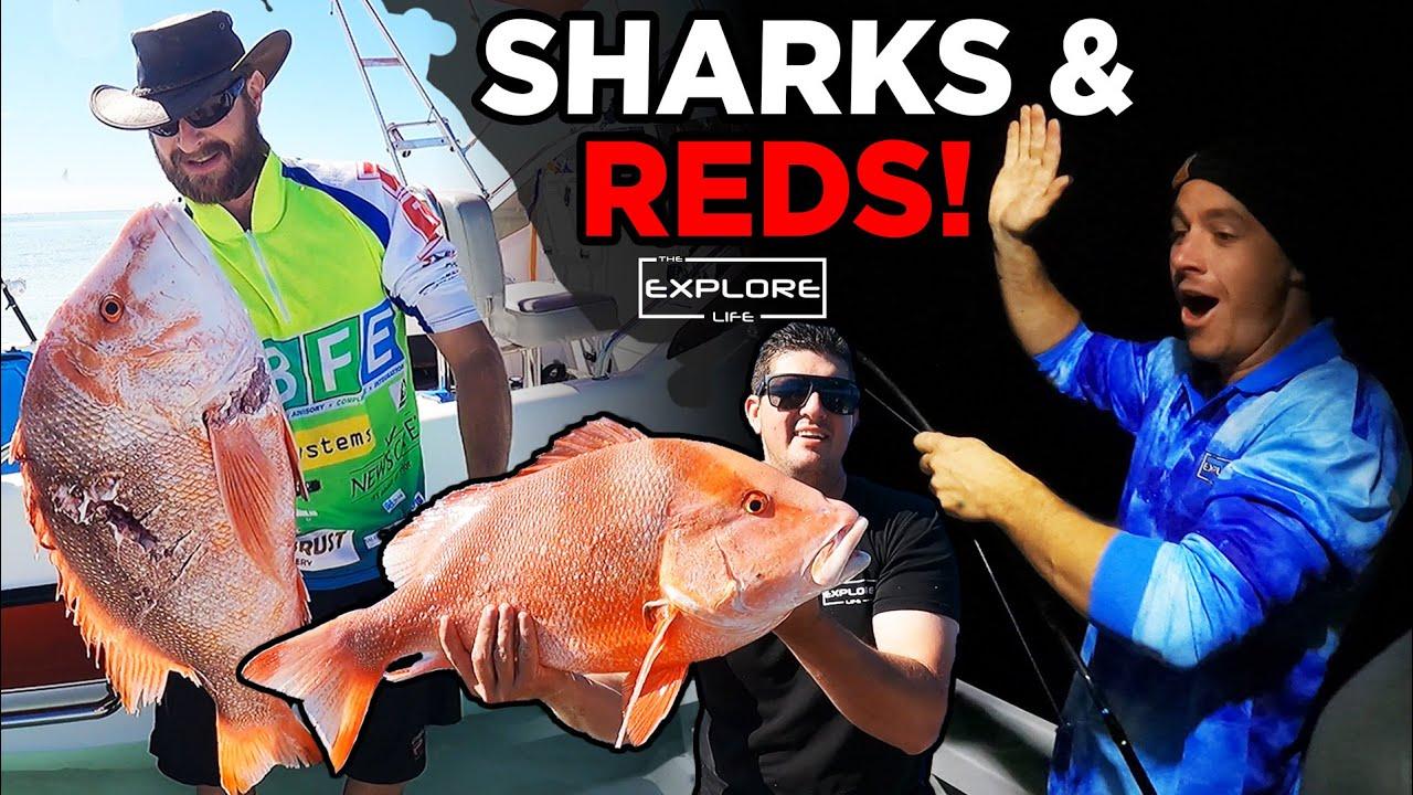 FISHING 100KMS OFFSHORE   NO FUEL, NO LIGHT & MASSIVE SHARKS!