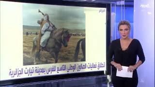 #أنا_أرى مزاد الطيور في ليبيا يصل إلى 36 ألف دولار