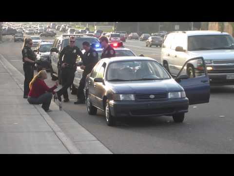 Manhattan Beach Police Department Pulls Over Motorist