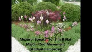 Mozart--Sonata No. 3 in B Flat Major--2nd Movement (Andante amorosa).wmv