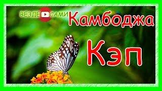 Камбоджа. Путешествие в Кеп и Кампот. Редкие бабочки. Перец Кампота. Ангауль бич.