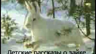 Детские рассказы о зайке Little Bunny на английском языке урок 1