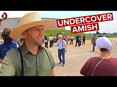 Download Inside Amish Auction 🇺🇸