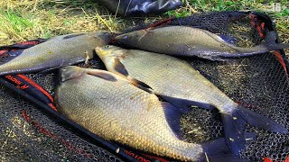 Лещ гнёт донку Рыбалка на Леща Ловля Леща рано утром Ловля леща весной 2021