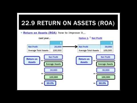 22.9 Return on Assets (ROA)