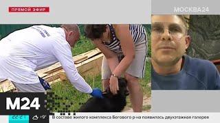 Москвичей призвали вакцинировать домашних животных от бешенства - Москва 24