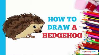 How to Draw a Hedgehog in a Few Easy Steps: Drawing Tutorial for Kids and Beginners