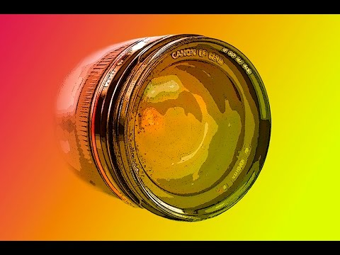 MACRO PHOTOGRAPHY TIPS - How To Focus For Maximum Depth Of Field ( DOF )