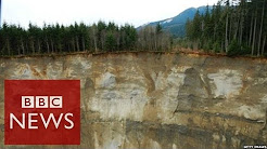 Washington State: Frantic call after landslide - BBC News