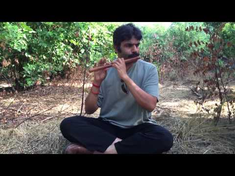 Intro by Flute Raman with Raaga Yamuna Kalyani - Flute Lesson CL367