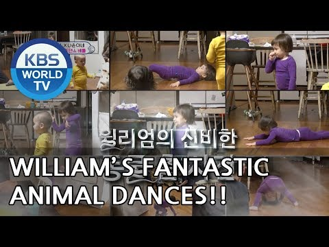 William's fantastic animal dances [The Return of Superman/2018.12.23]