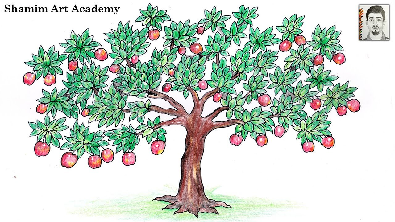 How to Draw Apple Tree (Very Easy Drawing) - YouTube