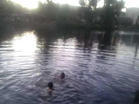 Summer in Berlin - Swimming @ Kiki Blofeld
