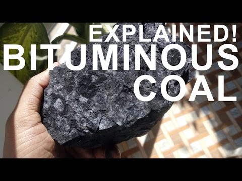 How coal is formed - Practically showed!