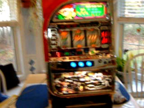 Dale earnhardt jr slot machine paul hornung gambling scandal
