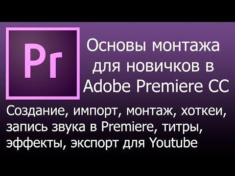 Экспорт видео в Adobe Premiere. - fl-