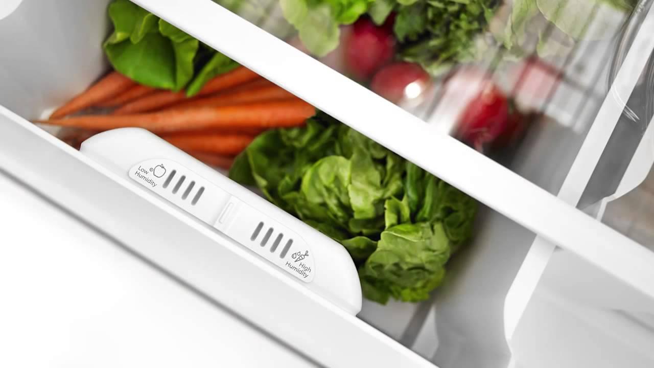 Berapa Lama Menyimpan Makanan di Kulkas agar tetap Segar