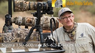 sigma 150 600mm f5 6 3 dg os hsm   s safari wildlife photography by kevin dooley idube safaris