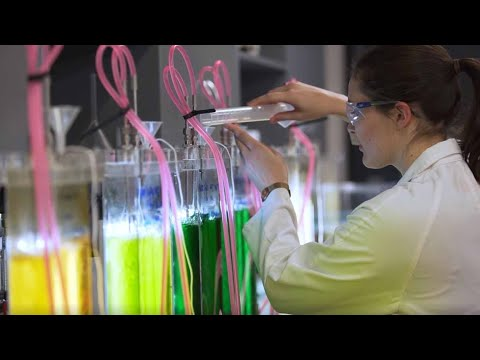 Bachelor Of Engineering Honours (Chemical And Biomolecular), University Of Sydney